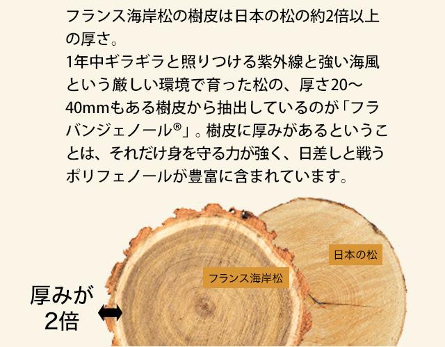 フラバンジェノールとは?フラバンジェノール(フランス海岸松樹皮エキス)=美容ポリフェノールフランス海岸松の樹皮は日本の松の約2倍以上の厚さ。1年中ギラギラと照りつける紫外線と強い海風という厳しい環境で育った松の、厚さ20~40mmもある樹皮に厚みがあるということは、それだけ身を守る力が強く、日差しと戦うポリフェノールが豊富に含まれています。